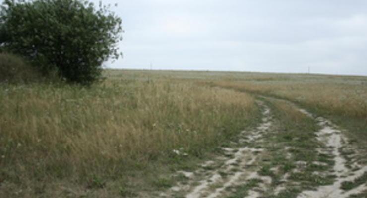 Украинский парламент собрался разрешить аренду земли предприятиям с иностранными инвестициями