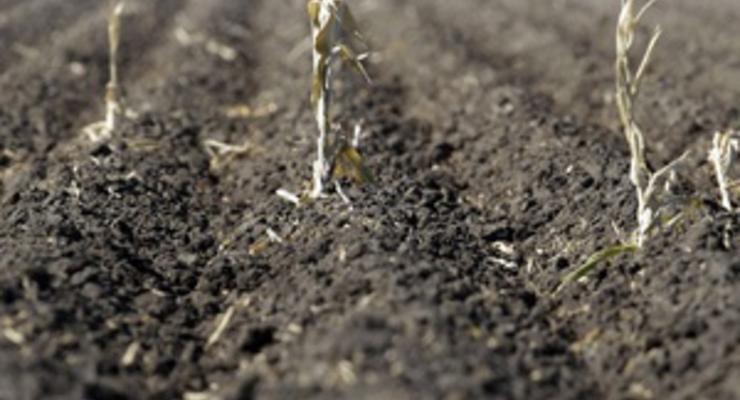 Стоимость аренды сельхозземель может вырасти втрое - Ъ