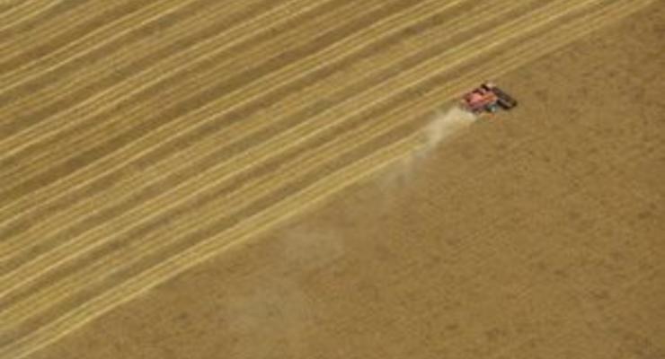 Соратник Мурси предупреждает о дефиците импортного зерна, основным поставщиком которого является Украина