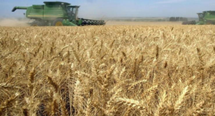 Власти похвастались увеличением экспорта зерна на четверть на фоне роста цен на хлеб