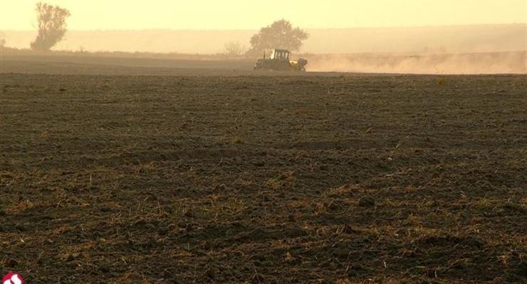 Открыть доступ к земельному кадастру обещают до 6 октября