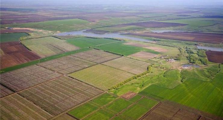 Крепостное право: кто на самом деле затормозил земельную реформу