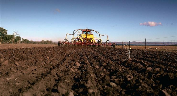В агросекторе работают 30% нелегально работающих украинцев