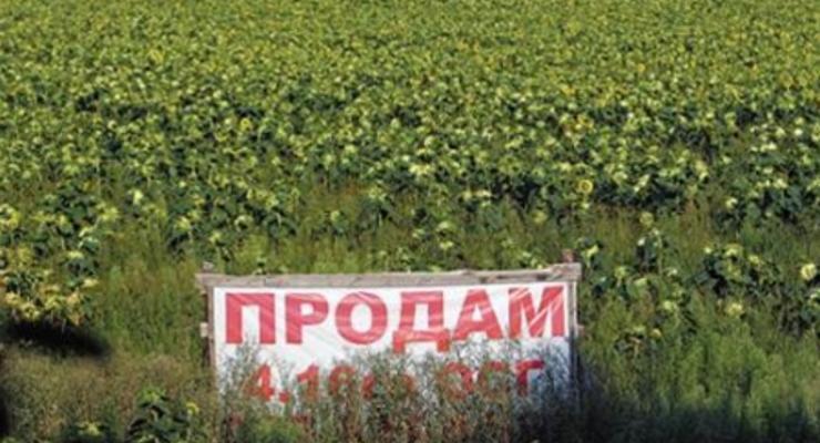 Минагропрод планирует продать 10 тыс га сельхозземель уже в этом году