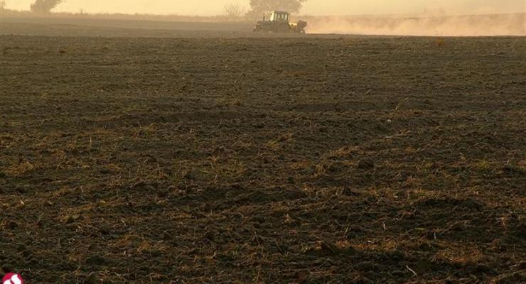 Глава Госгеокадастра: На распродажу земли из госфонда уйдут годы