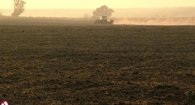 За открытие рынка земли выступает 85% паевиков - Минагрополитики