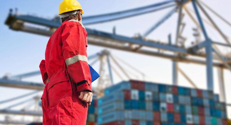В Украине стало больше экспортеров продуктов