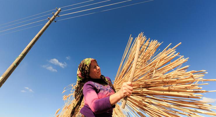 Сколько украинцев стало трудовыми мигрантами