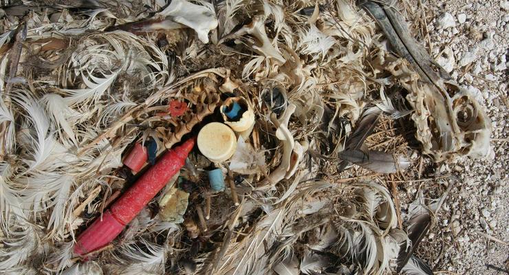 G20 подписали договор о борьбе с пластиком и готовят обязательные правила