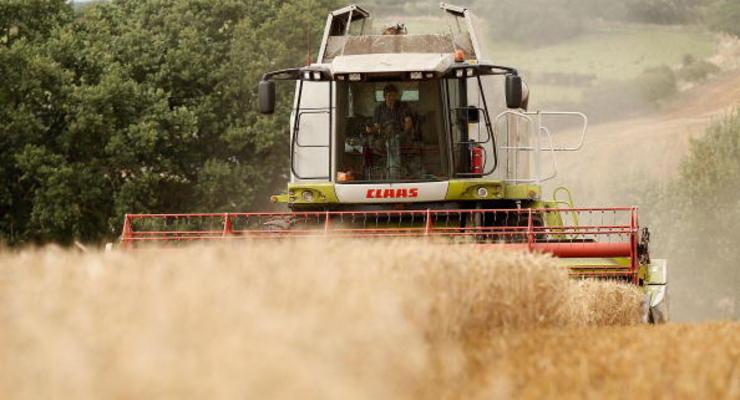 Украина вошла в ТОП-3 экспортеров аграрной продукции в Евросоюз