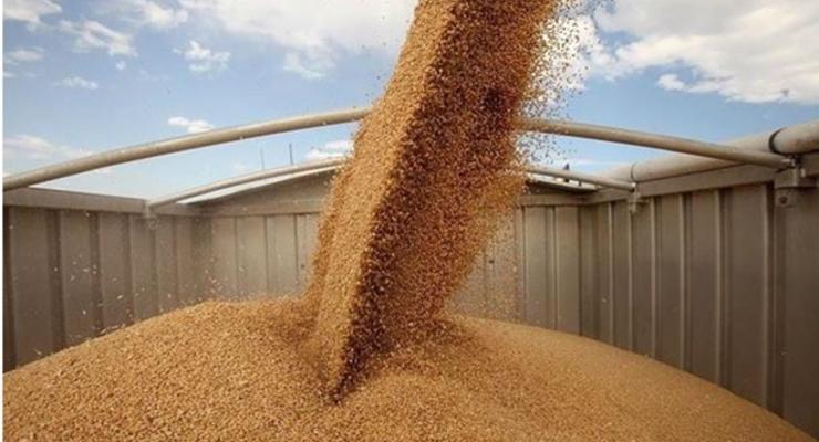 Исследование: Из Украины вывели $1,5 млрд прибыли от продажи зерна