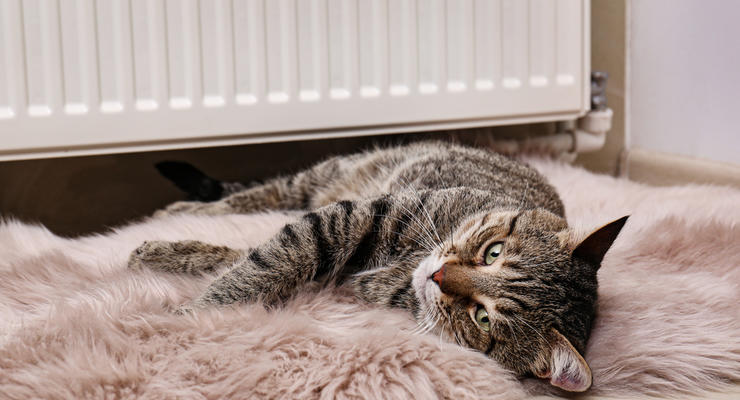 Кабмин ограничил тарифы на отопление и горячую воду