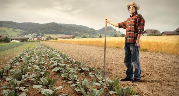 В НБУ рассказали, как буду кредитовать фермеров после снятия моратория на продажу земли