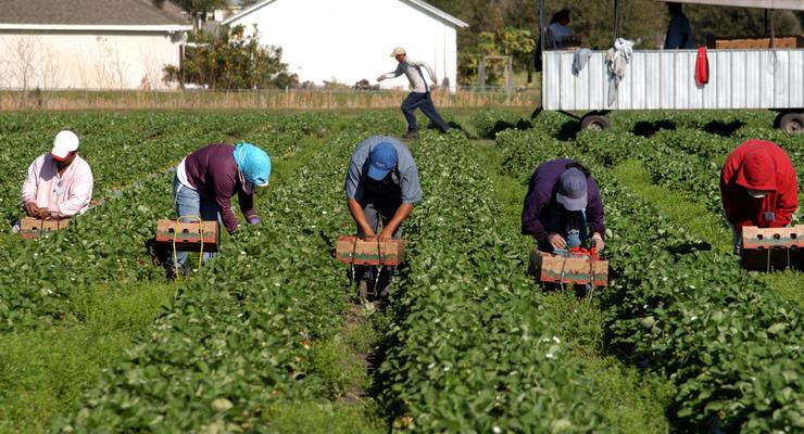 Украина и Литва начинают сотрудничество в сфере трудовой миграции