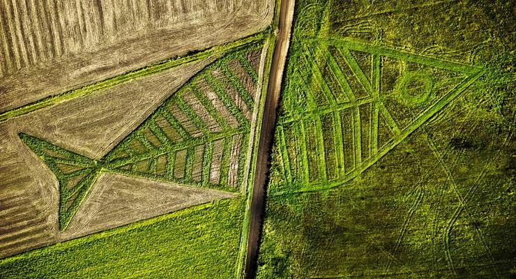 """""""Прозрачный рынок земли"""": Украинцам открыли доступ к кадастрам"""
