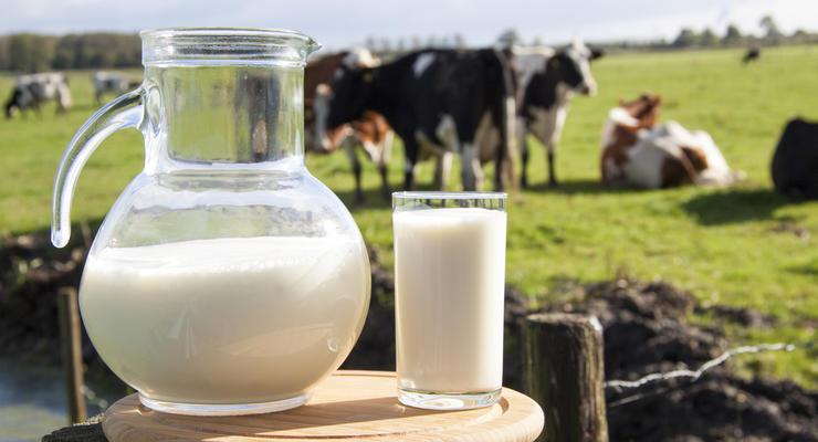 """В Украине грядет существенное подорожание """"молочки"""" - Ассоциация"""