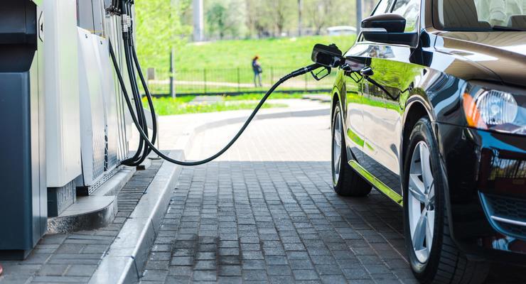 """Антимонопольный комитет """"попросил"""" крупнейшие сети АЗС снизить цены на бензин"""