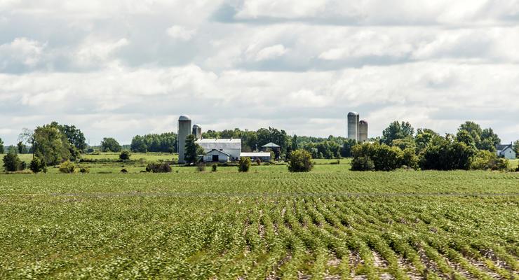 Земельная реформа в Украине: Стоит ли сразу продавать землю