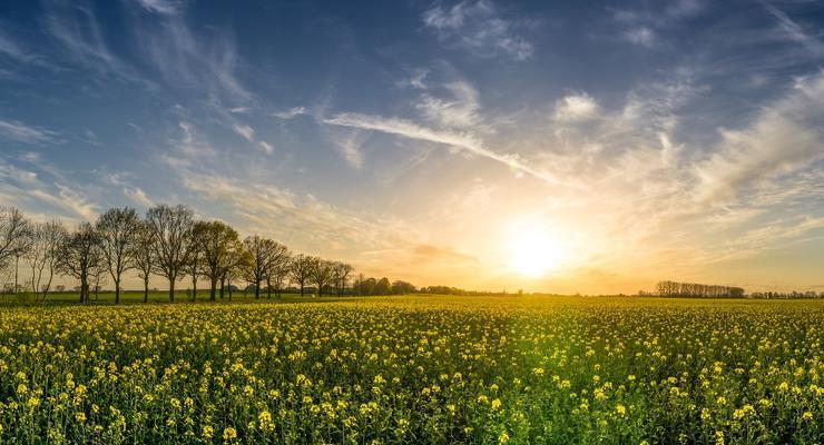 Как изменить целевое предназначение земельного участка в Украине