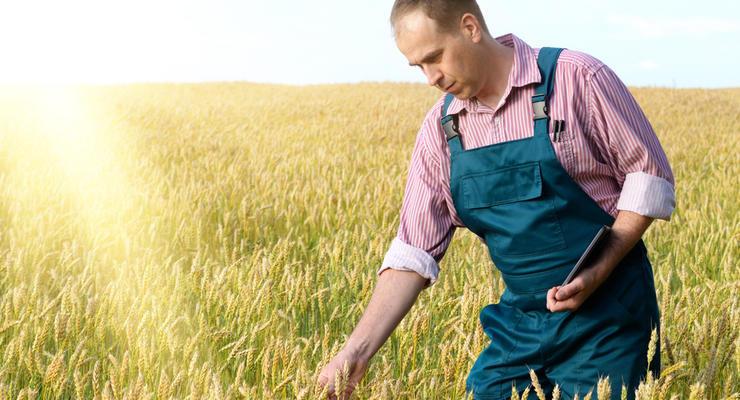 Налог на покупку земли в Украине составит 6,5%, – Минюст