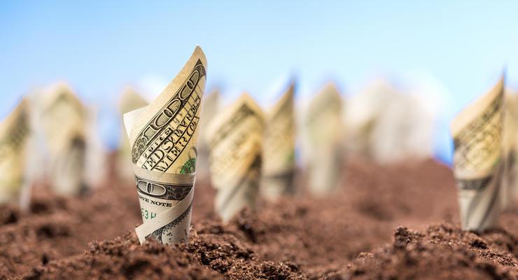 Рынок земли в Украине: стартовали онлайн-торги