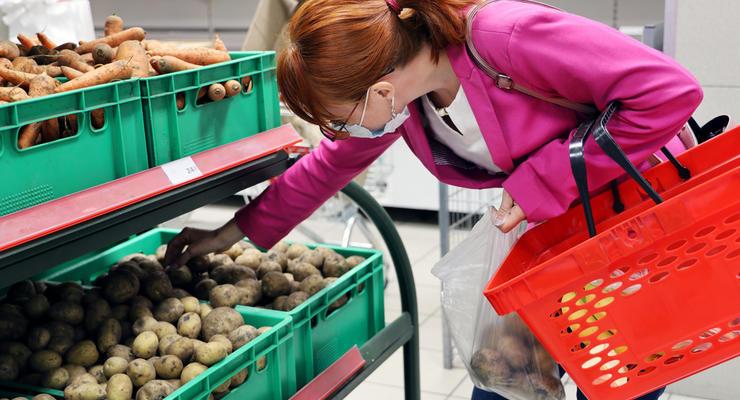 Картофель гниет на полях: что будет с ценами