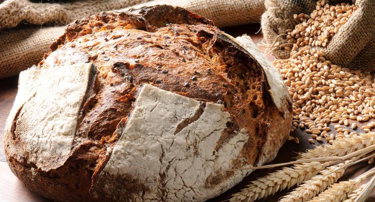 Украина собрала рекордный урожай пшеницы и ячменя